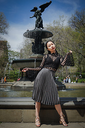 Zikki Lin -  - Afternoon at Bethesda Fountain