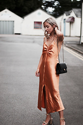 Daniella Robins - Dress - Evening Style With A Bronzed Twist