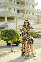 Leticia Oliveira - Shein Dress - Animal Print Dress