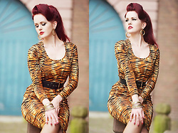 Charlotte S. - Couture For Every Body Hannah Wiggle Dress In Tiger Print, Bow & Cross Bones Wanda Xl Gold Hoops - Queen of the wild wild wind