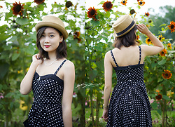 L Z - Urban Outfitters Pork Pie Hat, H&M Vintage Polka Dot Dress - Classic polka dots