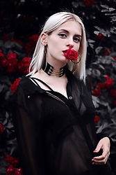 Polina Wayne -  - Rose in look