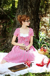 Bleu Avenue Ofbleuavenue - Lindybopusa Clementina Dress - Red Gingham & a Picnic Basket