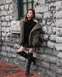 Lina Dinh -  - 111517 | puffer weather