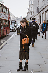 Stephanie Van Klev - & Other Stories Earrings, & Other Stories Turtleneck Pullover, Zara Pleated Skirt, & Other Stories Bag, Zara Ankle Boots - Regent Street