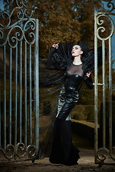 Sharon Boucquez - Haute Gothure Dress, Emmalyne Rose Collar - Gates to Hell