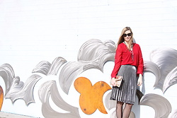 Cindy Batchelor - Amazon Red Long Sleeved Blouse, Amazon Silver Pleated Skirt $16 - Red Blouse, Silver and Gold