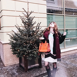 Maria Chamourlidou - Miu Bag, Julia Gurskaja Dress - Snowy outside