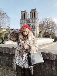 Emmy Nikolausson - Calvin Klein Bag, H&M Faux Fur - NOTRE DAME DREAM ~
