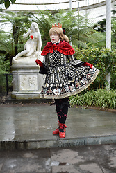 Lou Graves - Angelic Pretty Wonder Queen Op, Metamorphose Rose Print Socks, Laughing Vampire Red Fur Cape - The Queen of Hearts