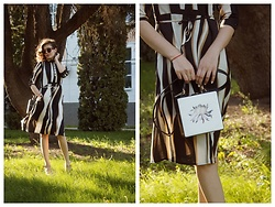 Katerina Lozovaya - Zaful Dress, Zaful Bag - Between the lines