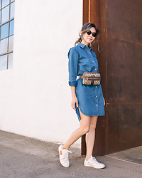Elizabeth Lee (Stylewich) - Everlane Jean Shirtdress, Gucci Ophidia Belt Bag, Comme Des Garcons Play X Converse Sneakers - Play
