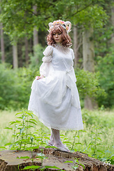 Nowaki Selenocosmia - Souffle Song Lady In Black Op, Lace Socks - Queen of the forest