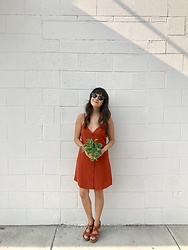 Rye - Warby Parker Hadley Sunglasses, Forever 21 Slip Dress, Target Wedges - New plant baby nora