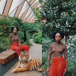 Enny Odeniyi - Urban Outfitters Tiger Print Top, Bones Via Asos Red Lace Up Leggings - Welcome to the jungle