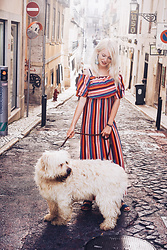 Marit De La Vera - Colourfull Dress - Who let the dog out?