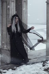 Ellone Andreea - Evnoir Brocade Vest, E&L By Lundqvist Waspie Corset, Vintage Maxi Skirt, Made By Me Black Roses Headdress, Silver Wig, Zara Button Down Shirt - Wintertide
