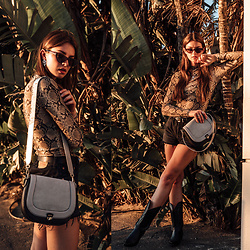 Jacky - Topshop Top, Levi'S Shorts, Black Palms Shop Old West Boots, Zoe Lu Bag, Chimi Eyewear Sunglasses - Animal Print: how to style the snake print