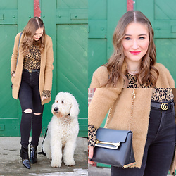 Taylor Doucette - Zara Cheetah Print Top, Gucci Skinny Belt, J. Crew Fuzzy Coatigan, Chloé Chloe Clare Bag, Kendall And Kylie Black Patent Booties - They Own This Town - flora cash