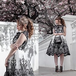 Eloise Alice -  - Chi Chi London Black and White Prom Dress