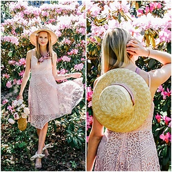Madara L - Ever Pretty Pink Lace Dress, Asos Straw Hat With Laces, Ebay Straw Bag - Romantic rhododendrons