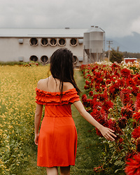 Gabby Chia - Asos Red Off The Shoulder Ruffle Hem Dress - In the Fields