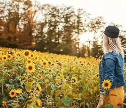 Vanessa ♡ -  - Sunflower field