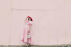 Amy Roiland - Sister Jane Dress - Pink and ready