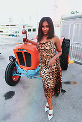 Ria Michelle - Nasty Gal If Not Meow Leopard Midi Dress, Schutz S Liane Studded Pointed Toe High Heel Mule - Dining with Macallan