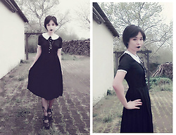 Nowaki Selenocosmia - Disturbia Sabbath Dress - Quarantine look