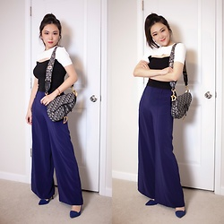 Ming Francis - Zara Knit Top, Christian Dior Saddle Bag, Ochirly Wide Leg Pants, Jimmy Choo High Heels - Dior Saddle Bag