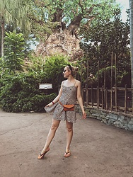 Katie Williams -  - Jungle princess at Animal Kingdom