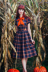 Bleu Avenue Ofbleuavenue - Unique Vintage Navy And Orange Plaid Swing Dress - Pumpkin Spice Season