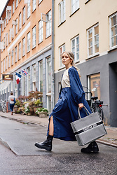Joicy Muniz - Baum Und Pferdgarten Dress, Christian Dior Bag - Rainy Days