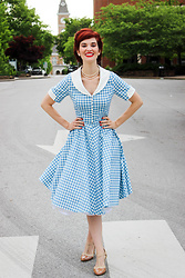 Bleu Avenue - Gowntown Vintage 1950s Cape Collar Swing Stretchy Dresses - Gingham Vintage